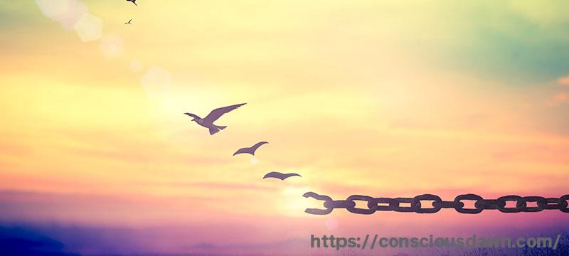 鎖から解き放たれる鳥たち