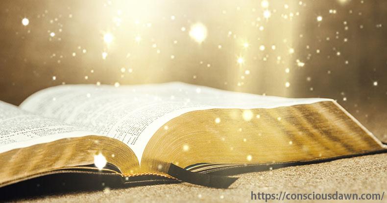 本に降り注ぐ光のシャワー