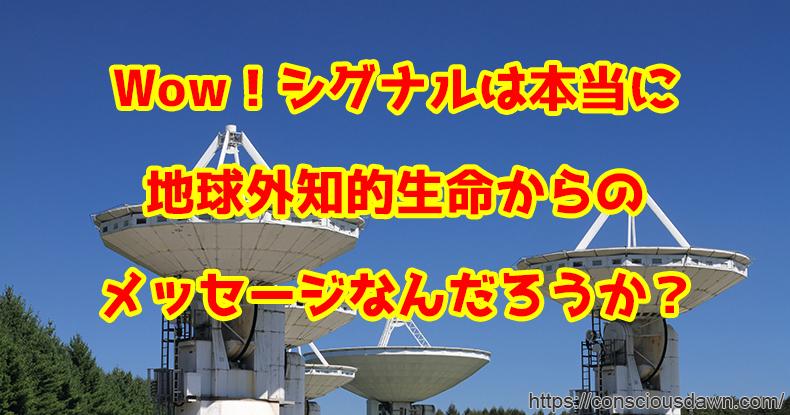 真上を向く電波望遠鏡
